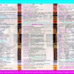 Program strona 2