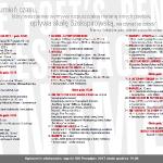 Program przeglądu strona 2